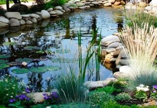 как украсить пруд в саду