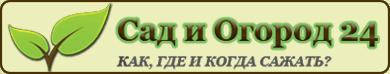 Сад и Огород 24