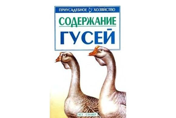 9046_soderzhanie-gusej-v-i-avramenko-2002