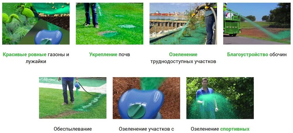 преимущества жидкого газона