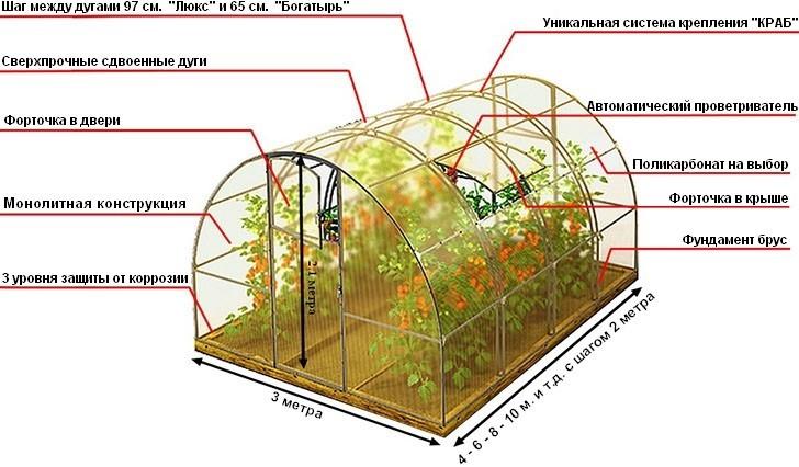 теплица структура