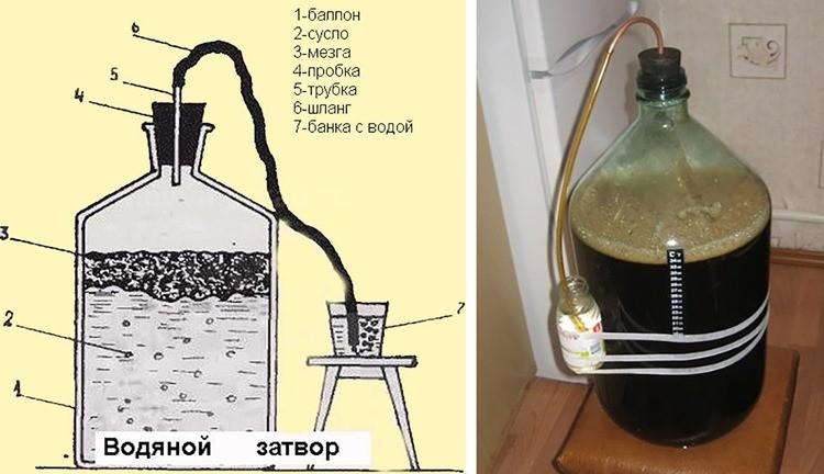 водяной затвор для вина схема + фото