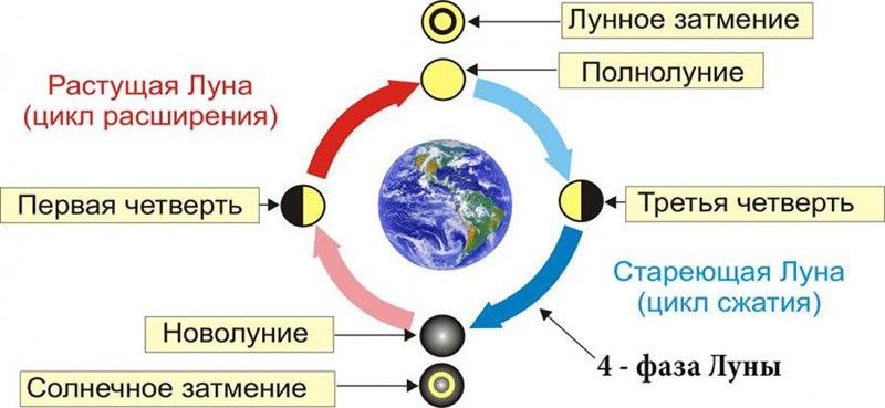 луна фазы луны