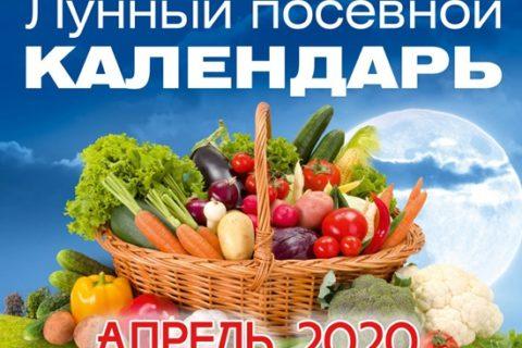 посевной календарь на апрель 2020