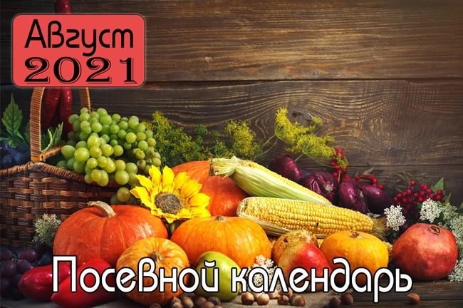 АВГУСТ 2021 Посевной календарь