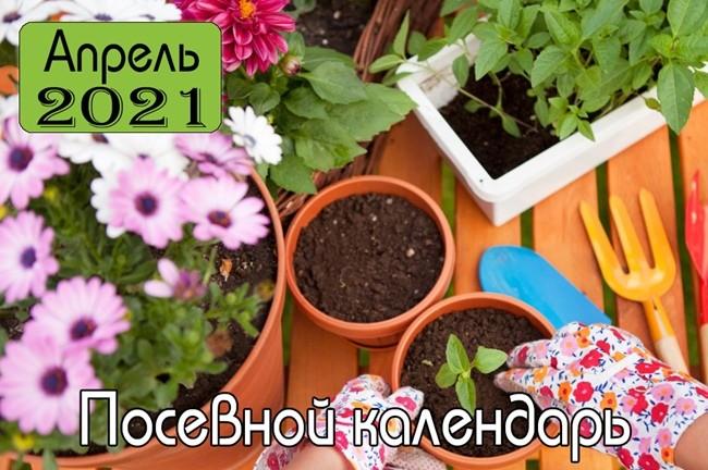 Апрель 2021 Посевной календарь