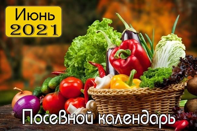 Июнь 2021 Посевной календарь