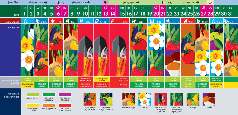 Лунный посевной календарь на март 2021 года (таблица благоприятных дней)