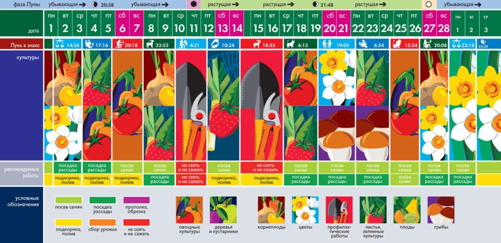Лунный посевной календарь на февраль 2021 года (таблица благоприятных дней)
