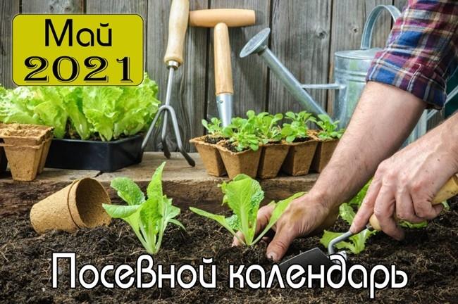 Май 2021 Посевной календарь