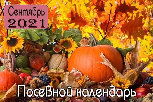 СЕНТЯБРЬ 2021 Посевной календарь