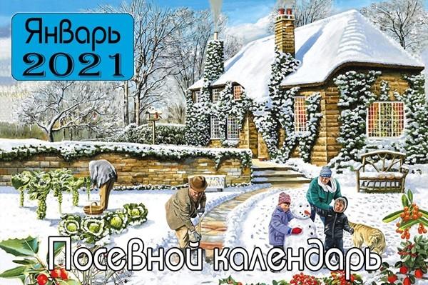 ЯНВАРЬ 2021 Посевной календарь