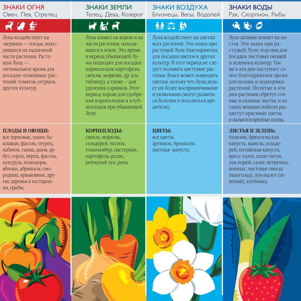 знаки Зодиака и посадочные работы в саду, огороде, цветнике