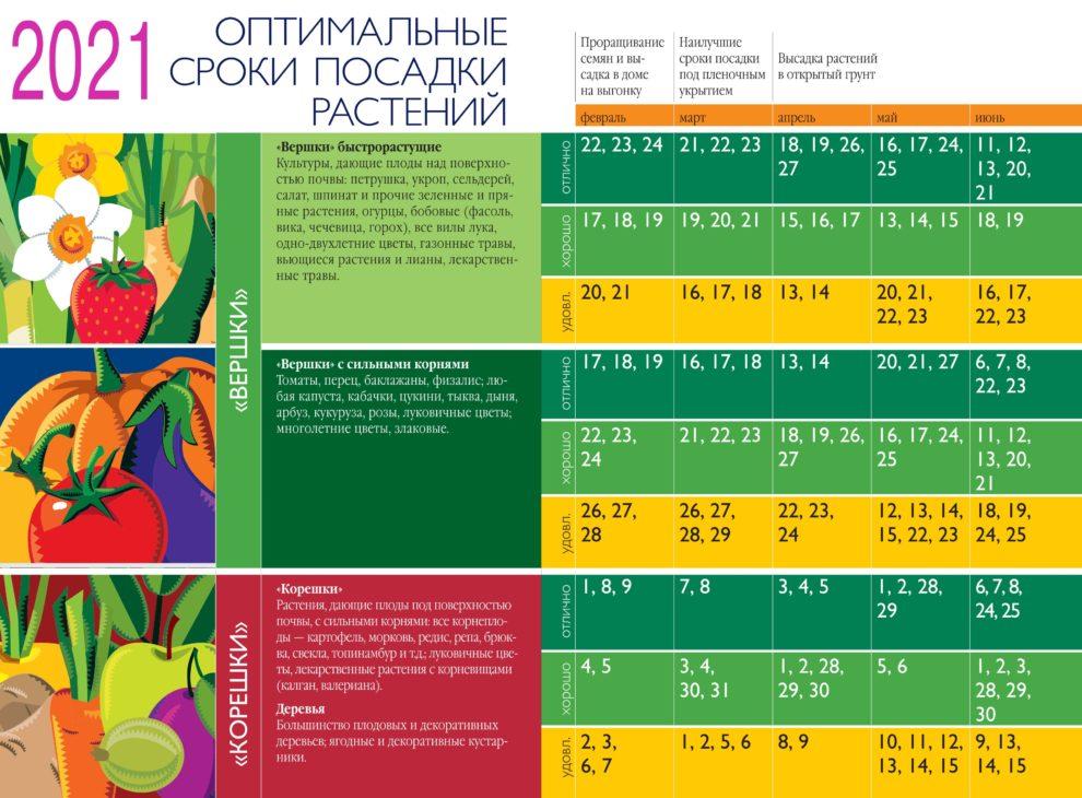 оптимальные сроки посадки растений на 2021 год