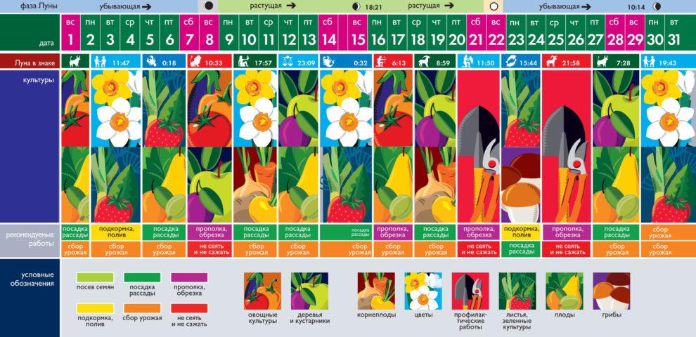 Лунный посевной календарь на август 2021 года (таблица благоприятных дней)