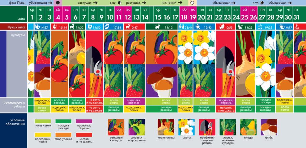 Лунный посевной календарь на декабрь 2021 года (таблица благоприятных дней)