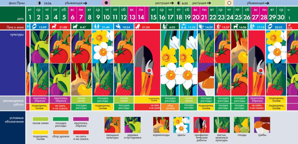 Лунный посевной календарь на июнь 2021 года (таблица благоприятных дней)
