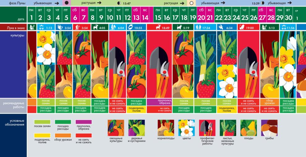 Лунный посевной календарь на ноябрь 2021 года (таблица благоприятных дней)