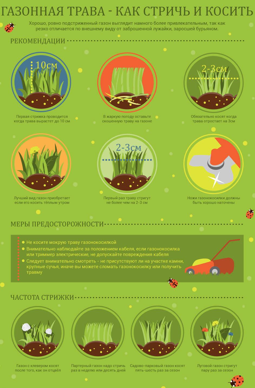 рекомендации по стрижке газона