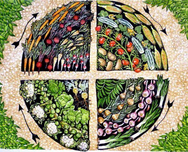 Потребность растений в питательных веществах