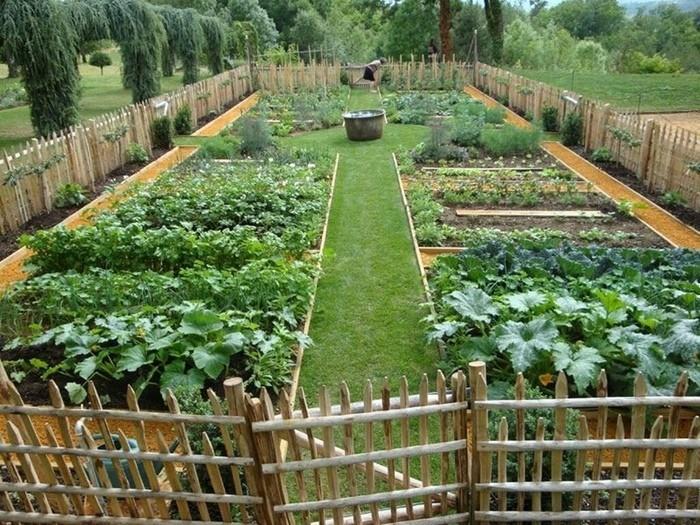 Небольшой огород для начинающих