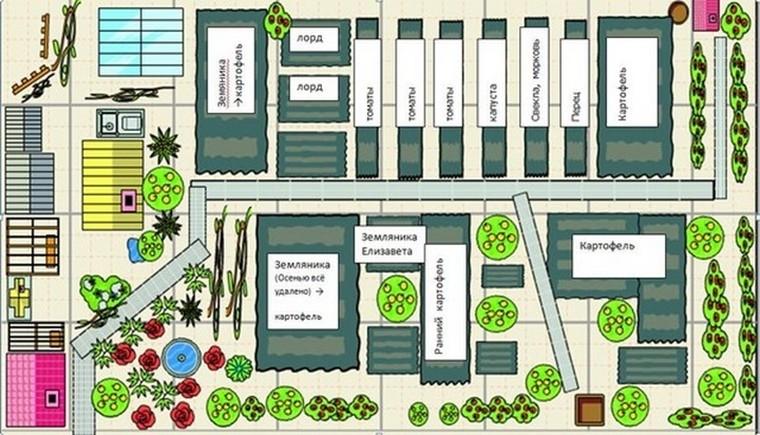 план схема огорода